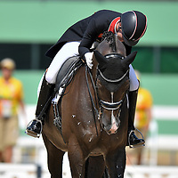Valegro - Competition