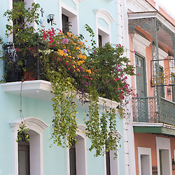A balcony garden above the streets of Old San Juan, Puerto Rico.