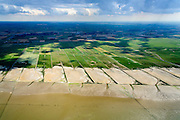 Nederland, Friesland, Gemeente Ferweradeel, 05-08-2014; <br /> Noorderleeg (Noarderleech) ook Noard-Fryslan Butendyks , buitendijkse polder en kweldergebied grenzend aan het Friesche Wad. Landaanwinning door middel van zogenaamde  kwelderwerken. Fot richting Friese kust, Ferwerd.<br /> Land reclamation, Noorderleeg (Northern Void), polder and salt marsh area outside the dikes. The so-called salt marsh works consist of square sections, bordered by brushwood breakwaters causing the sludge to settle.<br /> luchtfoto (toeslag); aerial photo (additional fee required); foto Siebe Swart / photo Siebe Swart
