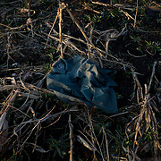 Part of an Ukrainian army uniform is seen among a destroyed crop field outside Petrovskiy village in Donetsk region.