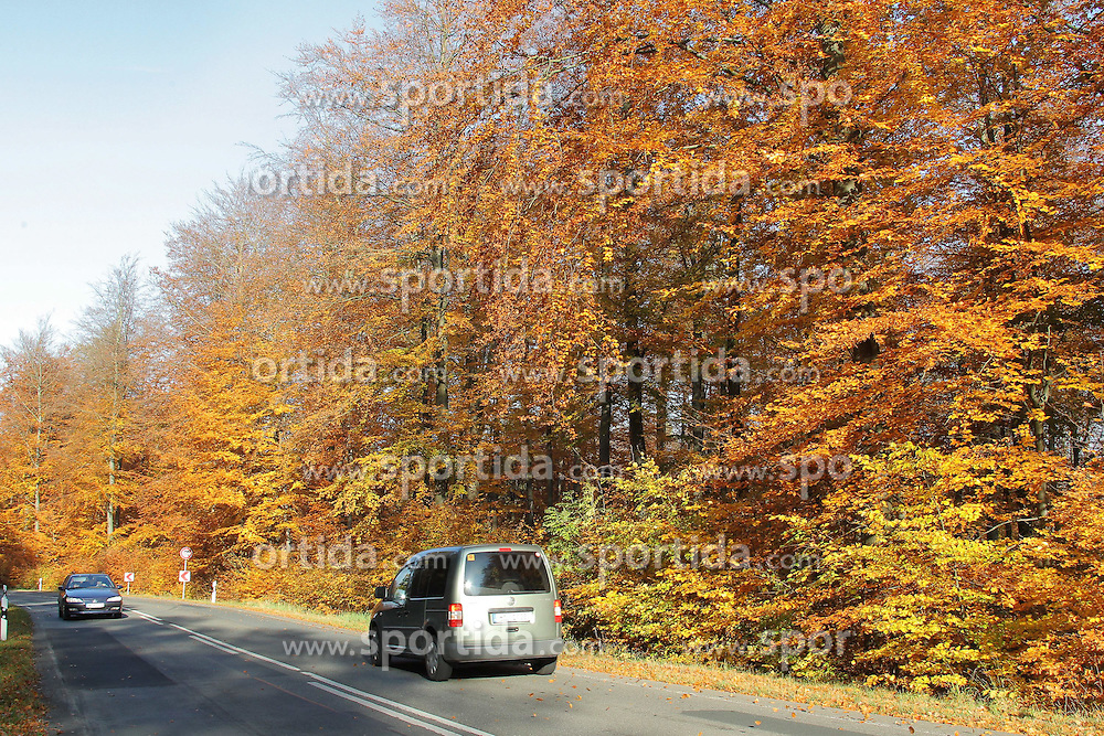 01.11.2011, Wettrfeature Themebild, GER, Hannover, im Bild  Herbst Laubwald Buchenblätter an der L401 -hier gesehen im Weserbergland bei Hannover am 01.11.2011. EXPA Pictures © 2011, PhotoCredit: EXPA/ nph/  Rust       ****** out of GER / CRO  / BEL ******