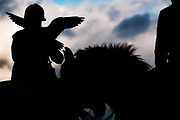 West Woodburn, Northumberland, England, UK. 31st August 2017. Dr Nick Fox OBE hunting crows with falcons on horseback in Northumberland.