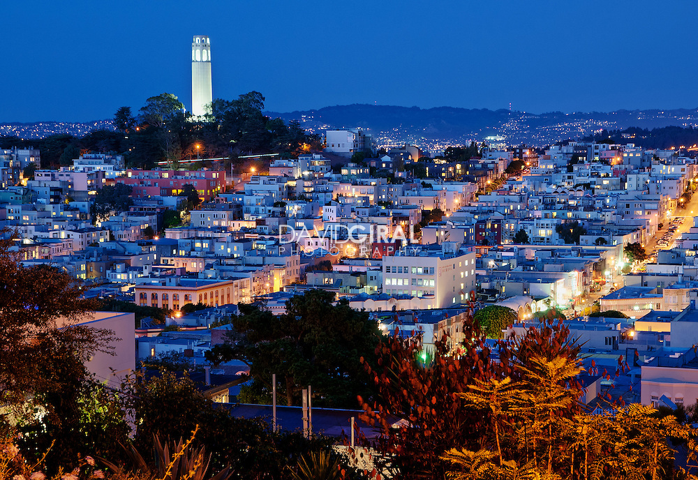 Purple Hour On Coit Tower and San Francisco Skyline, from Russian Hills, California, USA