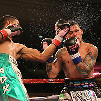 "Orlando ""El Fenomeno""  Cruz (R)  takes a left uppercut from Gabino ""Flash"" Cota during their Boxeo Telemundo WBO/NABO Super Featherweight bout on Friday, October 9, 2015 at the Kissimmee Civic Center in Kissimmee, Florida. Cruz, who is from Puerto Rico, is the first ever openly gay boxer  in the history of the sport and won the bout by unanimous decision.  (Alex Menendez via AP)"