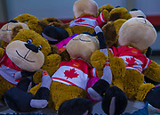 KELOWNA, CANADA - DECEMBER 02:  Teddy Bear Toss at the Kelowna Rockets game on December 02, 2017 at Prospera Place in Kelowna, British Columbia, Canada.  (Photo By Cindy Rogers/Nyasa Photography,  *** Local Caption ***