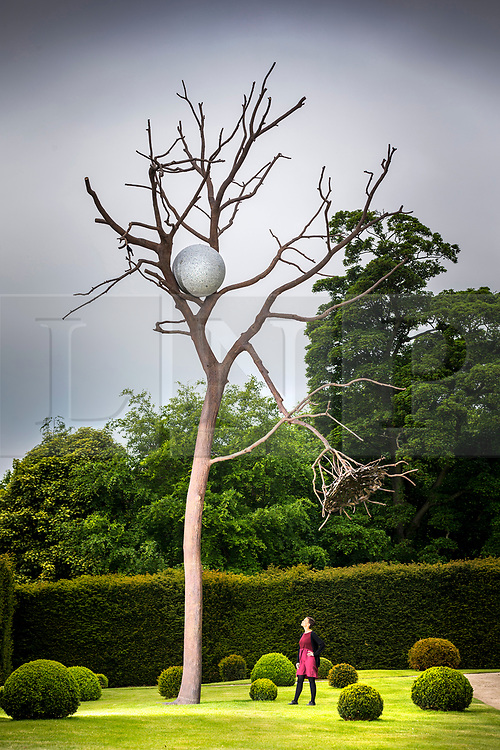 """© Licensed to London News Pictures. 24/05/2018. Wakefield UK. Kerry Chase looks a sculpture by Giuseppe Penone made of Bronze & Granite & called """"Luce e ombra"""" at the Yorkshire Sculpture park this morning. Giuseppe Penone presents his extensive new exhibition in YSP's light-filled Underground Gallery and across the historic landscape. Works drawn from the past five decades of Penone's career, including many never shown in the UK, trace his evolving and thoughtful consideration of humanity's intimate relationship with the natural world. His poetic practice addresses themes around the body, nature, time, touch and memory, played out across different materials from stone, acacia thorns and graphite, to thousands of laurel leaves. Photo credit: Andrew McCaren/LNP"""