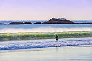 Male Surfer Standing in the Water Before the  Waves Break With Bird Rock in the Background