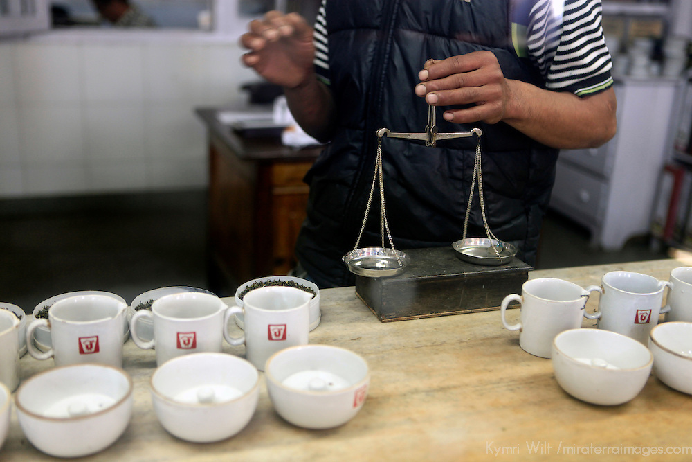 Asia, India, Darjeeling. Scales used to measure precise servings of Darjeeling tea tasting.