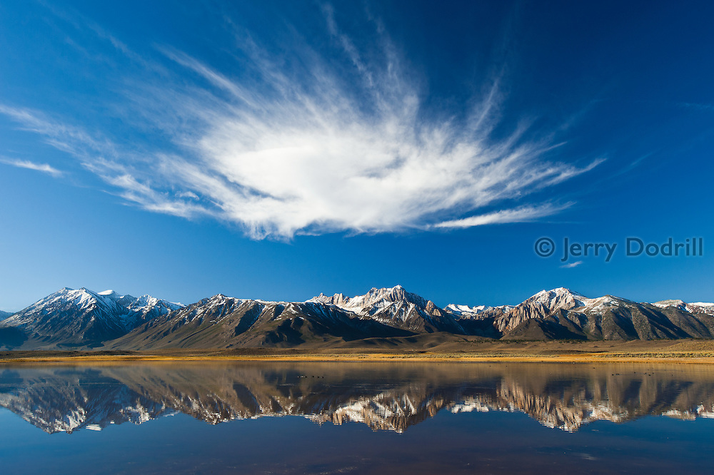 Cloud over Mt. Morrison and the High Sierra from Big Alkali Lake