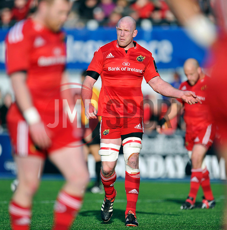 Paul O'Connell of Munster - Photo mandatory by-line: Patrick Khachfe/JMP - Mobile: 07966 386802 17/01/2015 - SPORT - RUGBY UNION - London - Allianz Park - Saracens v Munster - European Rugby Champions Cup