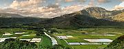A wide view of Hanalei Valley on the Island of Kauai in Hawaii.