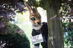 © Licensed to London News Pictures. 23/05/2016. Northallerton UK. Picture shows an anti fracking protester at Northallerton County Hall. A decision is expected today at Northallerton County Hall on wether to allow UK firm Third Energy to frack for shale gas in Kirby Misperton. Photo credit: Andrew McCaren/LNP