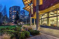 Dusk, King County Library,