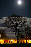 A tree on the Lawn at the University of Virginia, photographed by moonlight.