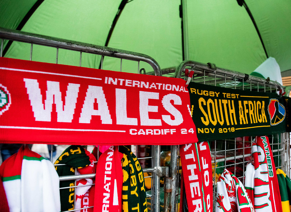 A flag showing Wales<br /> <br /> Photographer Simon King/Replay Images<br /> <br /> Under Armour Series - Wales v South Africa - Saturday 24th November 2018 - Principality Stadium - Cardiff<br /> <br /> World Copyright © Replay Images . All rights reserved. info@replayimages.co.uk - http://replayimages.co.uk