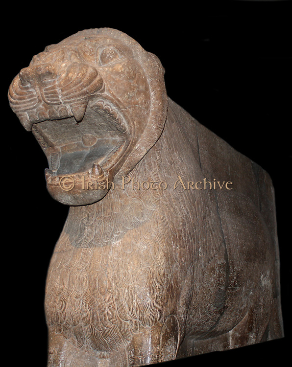 statue of a lion set as a guardian figure at the entrance to the Temple of Ishtar. The temple was in Nimrud (ancient Kalhu), in modern day Iraq. Neo-Assyrian, circa 883-859 BC