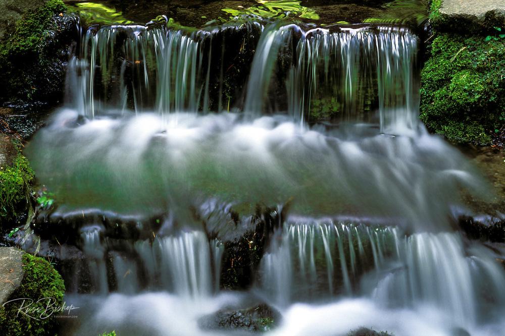 Fern Spring, Yosemite Valley, Yosemite National Park (World Heritage Site), California