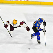 Chicopee-Comp Hockey