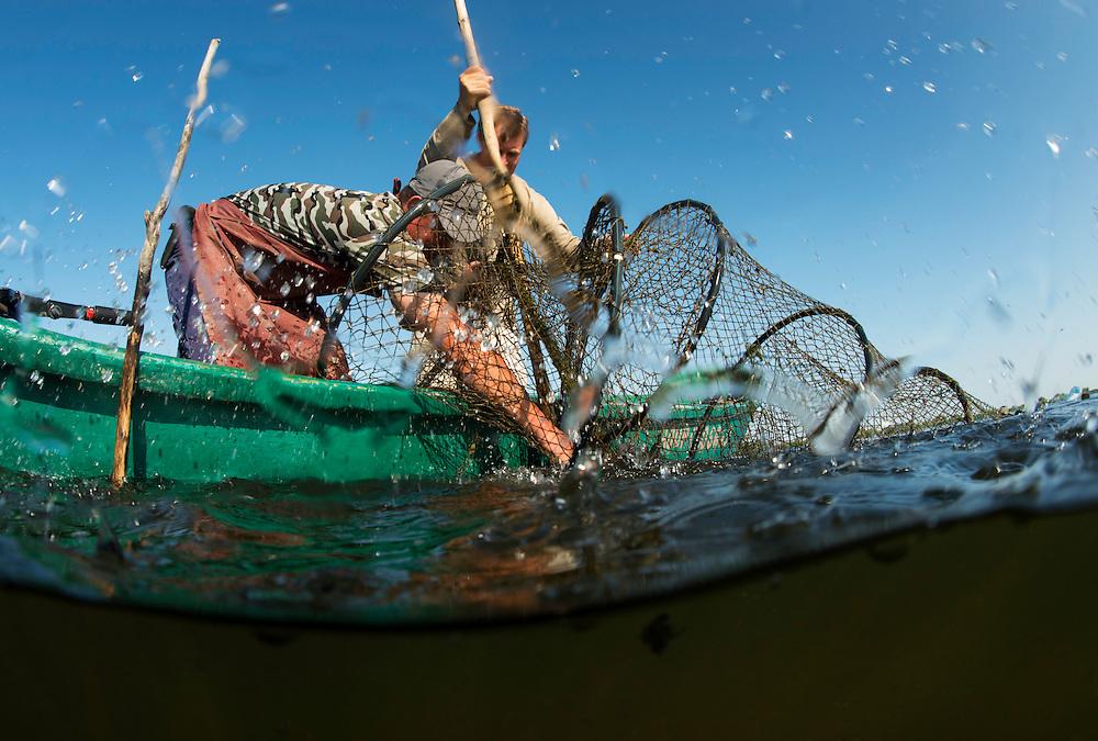 Traditional fishing check the fyke nets, Danube Delta fisherman, Florin Moisa, Danube Delta, Romania