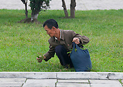 NORTH KOREA:<br /> The pictures Kim Jong Un doesn't want you to see<br /> <br /> Since 2008, Eric Lafforgue ventured to North Korea six times. Thanks to digital memory cards, I was able to save photos that I was forbidden to take or was told to delete by the minders.<br /> <br /> Photo Shows:  This kind of picture is widespread in the west. The caption often explains that North Koreans eat grass from the park. The guides get furious if you take it.<br /> ©Eric Lafforgue/Exclusivepix Media