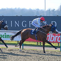 Lingfield 22nd February