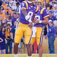 NCAA FOOTBALL 2010 - OCT 16 - MCNEESE  STATE  AT LOUISIANA STATE UNIVERSITY