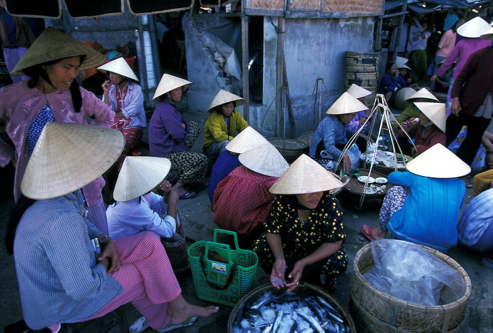 Hoi An daily fish market, Vietnam
