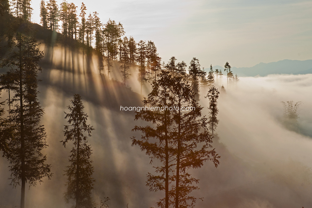 Vietnam Imges-Landscape-nature-Sapa Hoàng thế Nhiệm
