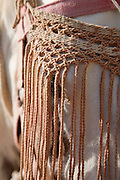 Grey Marwari horse wearing a fly swish to protect its eyes, Udaipur, Rajasthan, India.