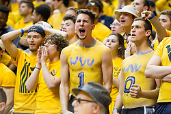 Feb 20, 2016; Morgantown, WV, USA; A West Virginia Mountaineers student reacts to a call during the first half against the Oklahoma Sooners at the WVU Coliseum. Mandatory Credit: Ben Queen-USA TODAY Sports