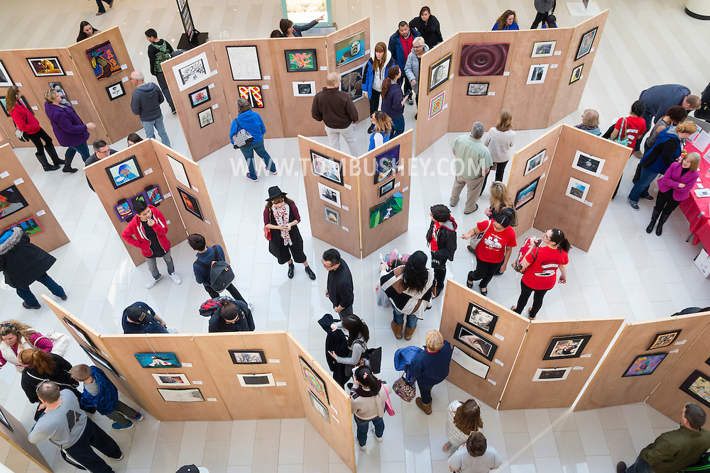 Town of Wallkill, New York - People look at work by high school artists at the Orange County Arts Council's Visual Arts Display at the Galleria at Crystal Run on Feb. 27, 2016.