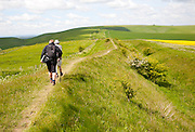 Two men walking along the ditch and embankment of the Wansdyke a Saxon defensive structure on All Cannings chalk downs near Tan Hill, Wiltshire, England