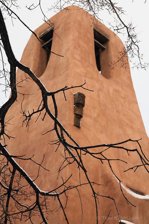 Tree and adobe, Santa Fe, NM