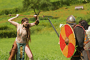 Celtic warrior attacking viking warriors.
