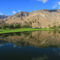 The twelfth hole of Indian Canyons Golf Resort in Palm Springs is a 217-yard par 3 over water. Photographed Tuesday, October 29, 2013. Crystal Chatham/The Desert Sun