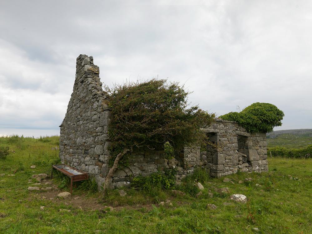 Overgrown ruin Ireland Burren region western coast Ireland