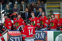 KELOWNA, CANADA - APRIL 7: Portland Winterhawks' assistant coach Oliver David and head coach Mike Johnston watch the replay from the bench against the Kelowna Rockets on April 7, 2017 at Prospera Place in Kelowna, British Columbia, Canada.  (Photo by Marissa Baecker/Shoot the Breeze)  *** Local Caption ***