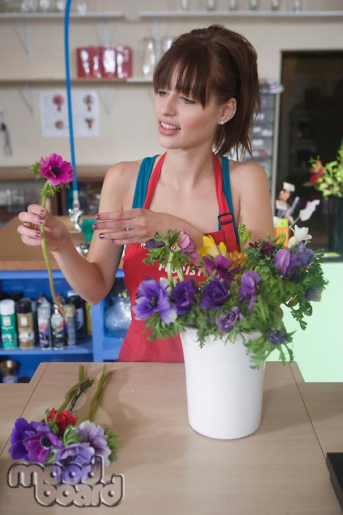 Florist arranges flowers in a vase