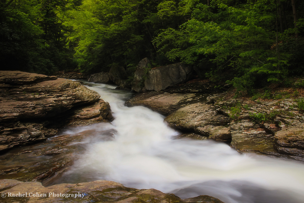 &quot;Meadow Run&quot;<br /> <br /> Scenic Meadow Run in Ohiopyle State Park located in the Laurel Highlands of PA.<br /> <br /> Laurel Highlands by Rachel Cohen