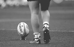 European Rugby Challenge Cup branding - Mandatory by-line: Nizaam Jones/JMP - 19/01/2019 - RUGBY - Ashton Gate Stadium - Bristol, England - Bristol Bears v Enisei-STM - European Rugby Challenge Cup