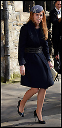 Princess Beatrice leaves  Westminster Abbey after the service to celebrate the life and work of Sir David Frost, Westminster Abbey, London, United Kingdom. Thursday, 13th March 2014. Picture by Andrew Parsons / i-Images