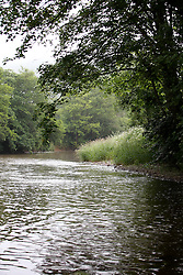 UK ENGLAND CORNWALL 23UN15 - View of the river Tamar at Polson Bridge, Launceston, Cornwall.<br /> <br /> jre/Photo by Jiri Rezac / WWF UK<br /> <br /> © Jiri Rezac 2015