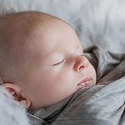 Jed Newborn