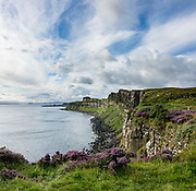 Purple heather and green grass cover the cliffs of Trotternish Peninsula above the Sound of Raasay, on Isle of Skye, Scotland, United Kingdom, Europe. Enjoy this view southwards towards Brothers Point from the same viewpoint as Kilt Rock & Mealt Falls along the A855 road, 15 km north of Portree (2 km south of Staffin) on Skye, the largest and northernmost of the major islands in the Inner Hebrides. Between 61 and 55 million years ago, volcanic activity on the west coast of Scotland covered the northern half of Skye in layers of molten rock over 1200m thick. Molten rock squeezed between layers of Jurassic sandstone rocks then cooled slowly and shrank into striking polygonal columns seen along this coast. This image was stitched from several overlapping photos.