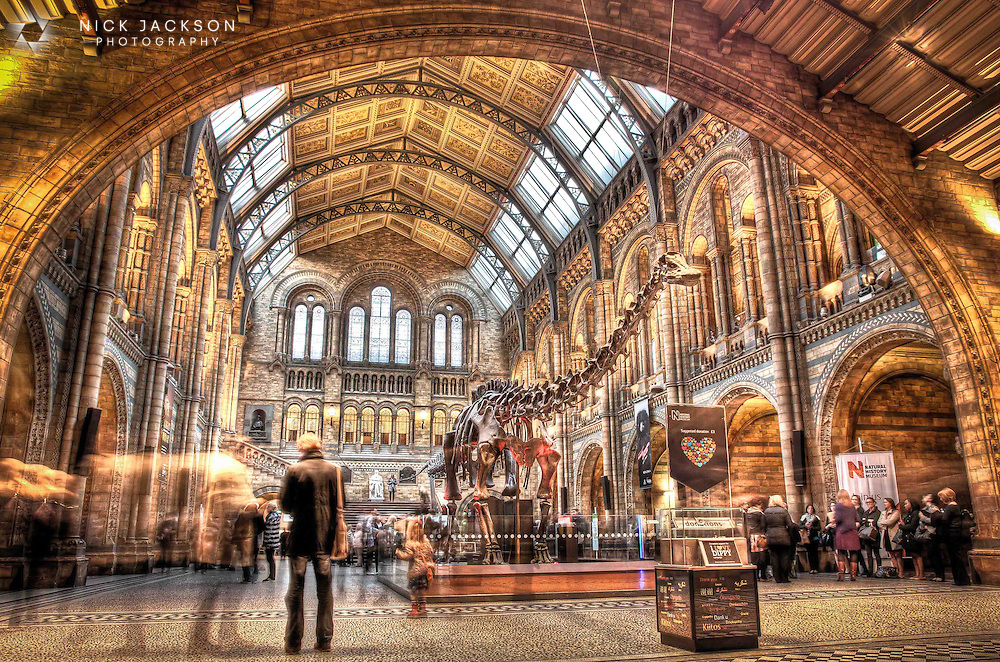 The museum is home to life and earth science specimens comprising some 80 million items within five main collections: botany, entomology, mineralogy, palaeontology and zoology. More importantly (for me) it houses Dippy the Diplodocus, an amazing cast of a dinosaur, in it's entrance hall.
