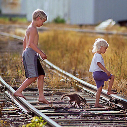 Jesse Cambpell,12, and his four-year-old sister Amanda, walk with his baby raccoon pet, Harmony across the railroad tracks in Eyota. Campbell said the raccoon had been rescued by A-1 Animal Control where their mother works.