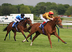 Golden Stunner ridden by F. M. Berry (R) wins the 5.05 The Ladies Night on Saturday 2nd July Maiden Fillies' Stakes - Mandatory by-line: Jack Phillips/JMP - 22/05/2016 - HORSE RACING - Nottingham Racecourse - Nottingham, England - The Nottingham Post Community Day In Association With MacMillan