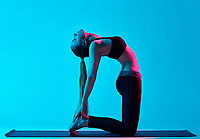 one caucasian woman exercising Ustrasana camel pose yoga exercices  in silhouette studio isolated on blue background