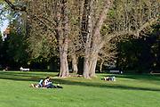 Kurpark, Menschen liegen auf Wiese, Wiesbaden, Hessen, Deutschland | spa gardens, people on grass, Wiesbaden, Hesse, Germany