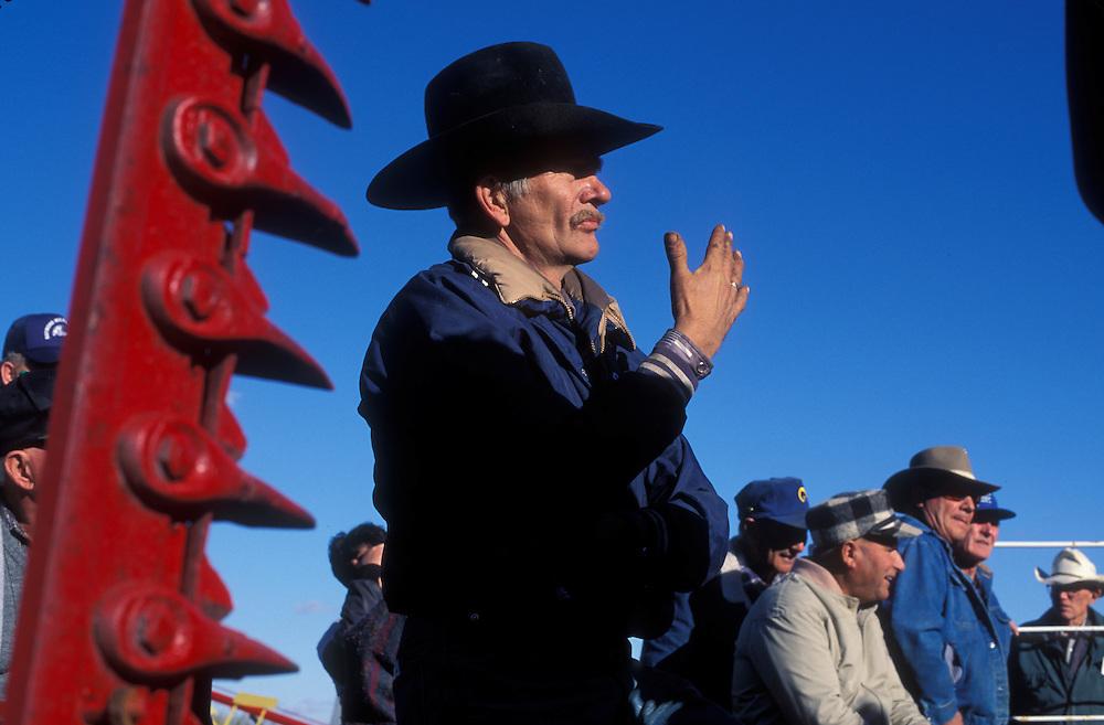Canada, Saskatchewan, Whitewood, (MR) Wayne R. Way watches auction at Fair Chance Clydesdale Farm